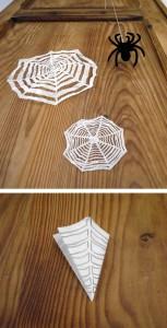Spinnennetz / Telaraña / Spider web