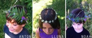 Coronas / Crowns / Kronen