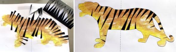 Tigre / Tiger / Tiger