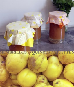 Membrillos / Quinces / Quitten