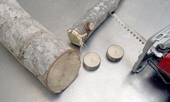 holzscheiben anmalen rodajas de madera pintar wood slices painted kids kinder niños manualidad basteln craft spass
