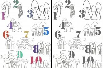 pilze nummern template kinder ausmalen niños descargar setas numeros kids download paint mushrooms learn numbers