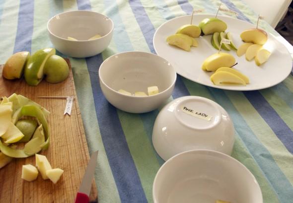 appels game taste fun kids äpfel geschmack spiel kinder spaß niños manzanas gusto juego divertido