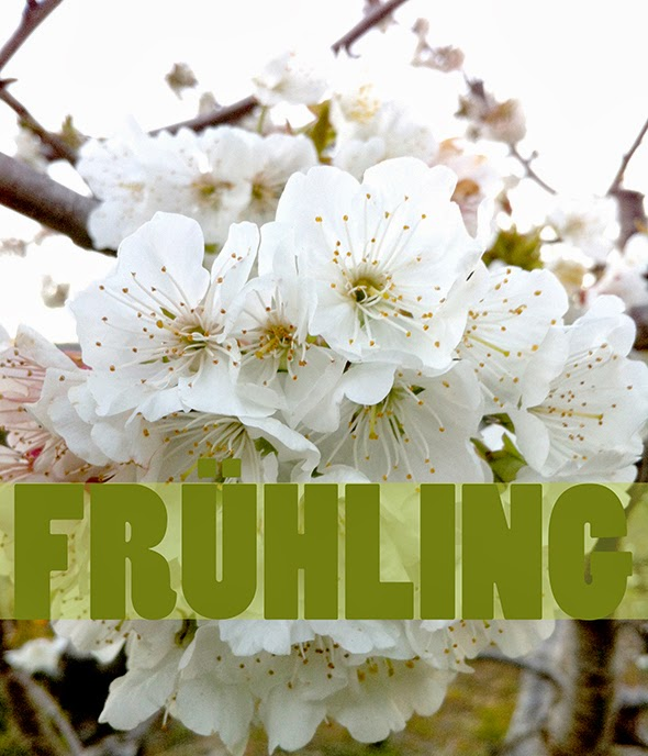 Spring / Primavera / Frühling