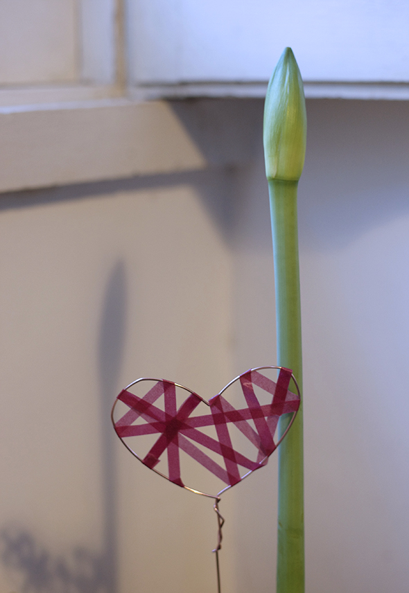 Valentins Herz / Corazón de San Valentin / Valentines Heart