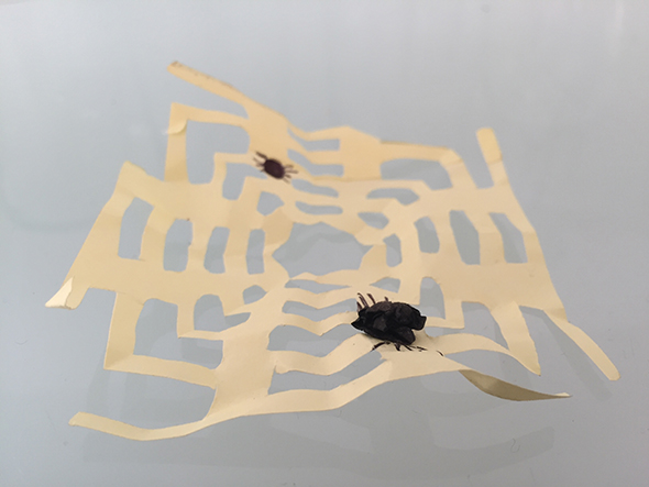 TELARAÑA, SPIDER WEB, SPINNENNETZ post it halloween easy fast craft leicht schnell