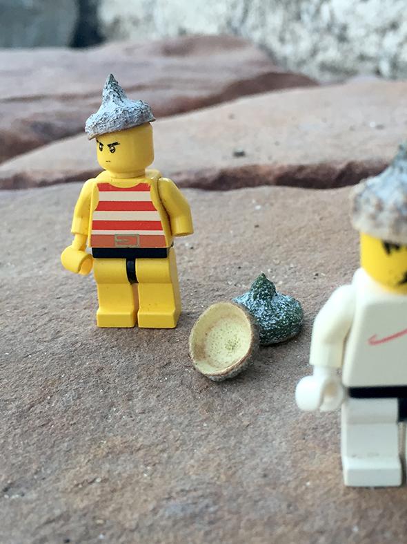 lego  spielen jugar play eucalipto hütchen hut sombrebro hat