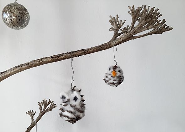 Eulen / Búhos / Owls