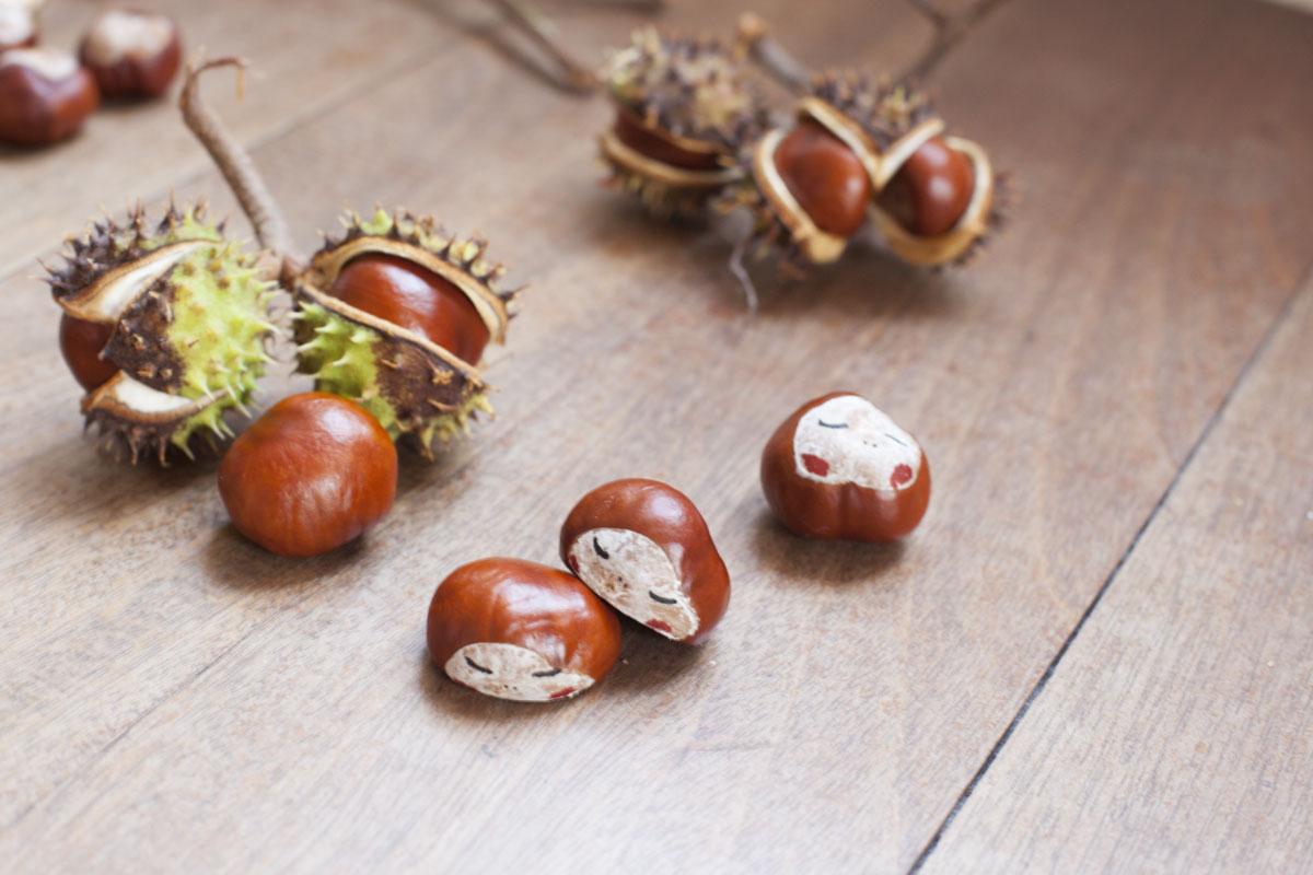 Kastanien / Castañas / Chestnuts